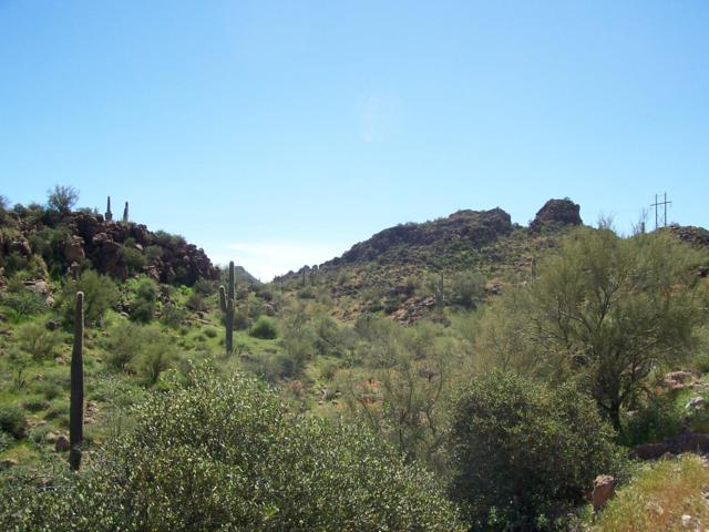 198 S Piedra Negra Drive, Queen Valley, AZ 85118 (MLS #5861489) :: Dijkstra & Co.