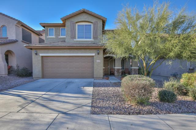 7524 W Millerton Way, Florence, AZ 85132 (MLS #5861554) :: The Everest Team at My Home Group