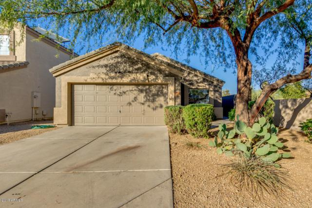 9758 E Butte Street, Mesa, AZ 85207 (MLS #5861613) :: The Bill and Cindy Flowers Team