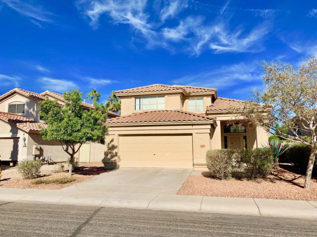 1294 W Macaw Drive, Chandler, AZ 85286 (MLS #5861652) :: The Daniel Montez Real Estate Group