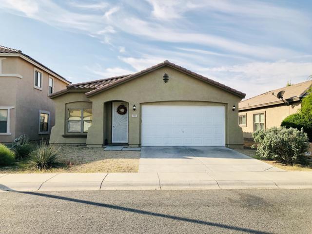 937 E Doris Street, Avondale, AZ 85323 (MLS #5861691) :: The Laughton Team