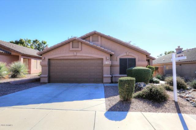 7489 E Christmas Cholla Drive, Scottsdale, AZ 85255 (MLS #5861700) :: The Pete Dijkstra Team