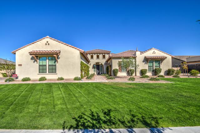 17674 E Colt Court, Queen Creek, AZ 85142 (MLS #5861731) :: Conway Real Estate