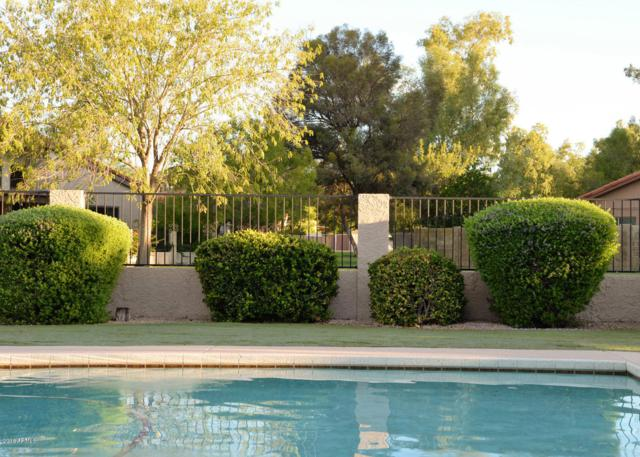 520 W Gleneagles Drive, Phoenix, AZ 85023 (MLS #5861740) :: The W Group