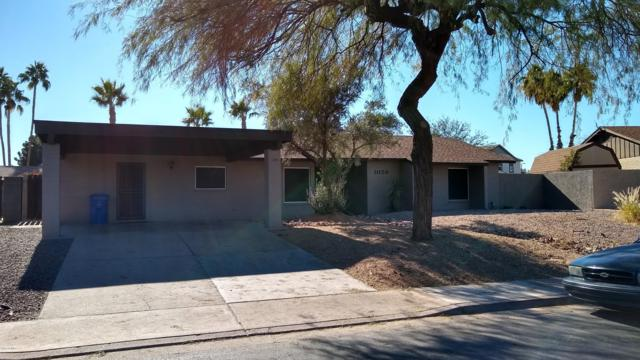 1059 W Laguna Azul Avenue, Mesa, AZ 85210 (MLS #5861777) :: The W Group
