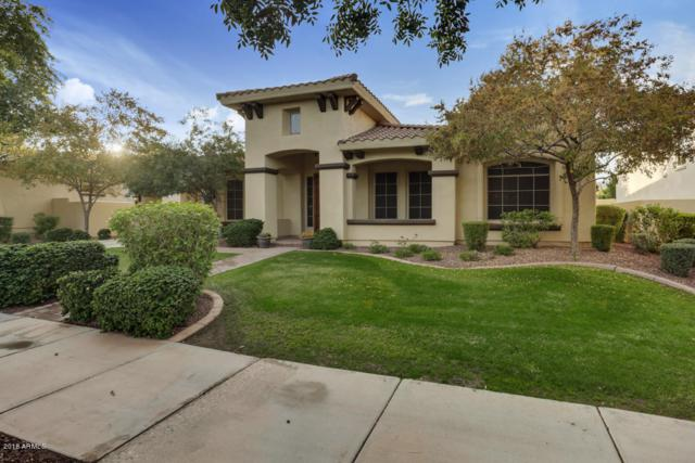3882 N Park Street, Buckeye, AZ 85396 (MLS #5861848) :: The Results Group