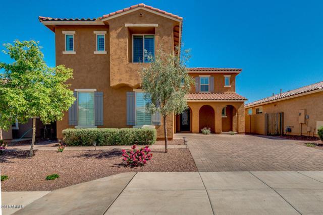 10408 W Rosewood Lane, Peoria, AZ 85383 (MLS #5861861) :: The W Group