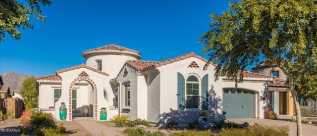 4688 N 206TH Avenue, Buckeye, AZ 85396 (MLS #5861941) :: Lifestyle Partners Team