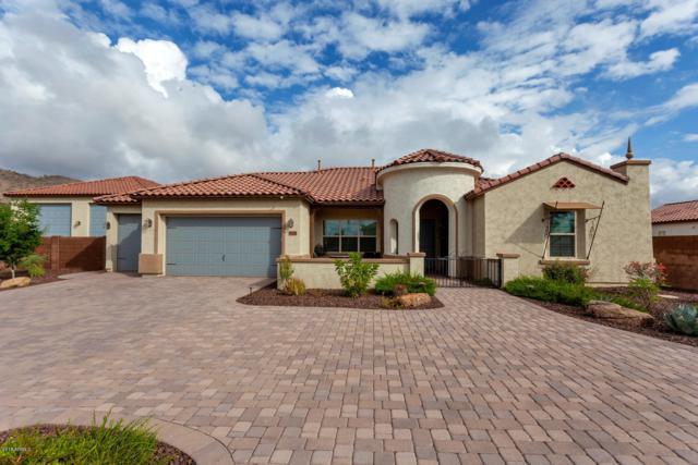 8080 W Chama Drive, Peoria, AZ 85383 (MLS #5861957) :: CC & Co. Real Estate Team