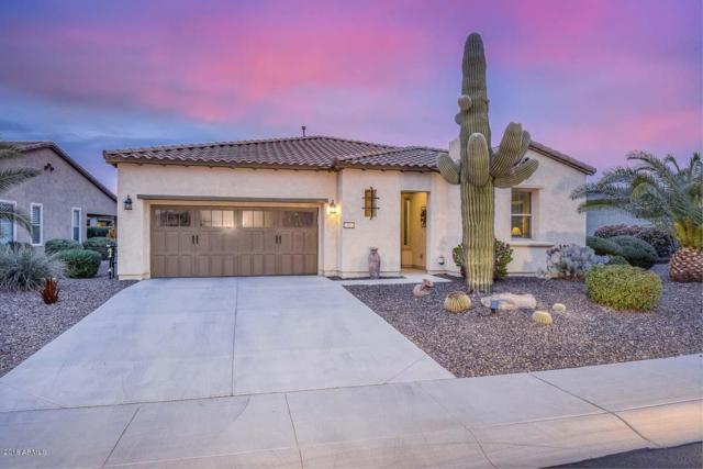 13052 W Steed Ridge, Peoria, AZ 85383 (MLS #5862062) :: The Everest Team at My Home Group