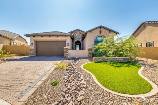 9009 E June Circle, Mesa, AZ 85207 (MLS #5862072) :: Conway Real Estate