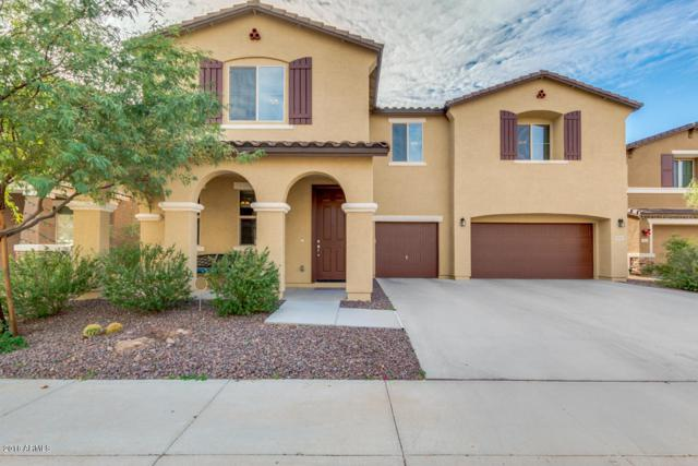 7917 W Molly Drive, Peoria, AZ 85383 (MLS #5862105) :: Lifestyle Partners Team