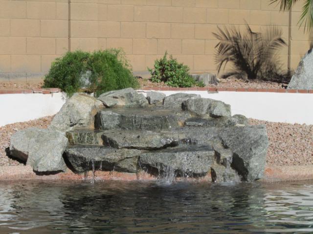 16431 N 39TH Place, Phoenix, AZ 85032 (MLS #5862186) :: Lucido Agency