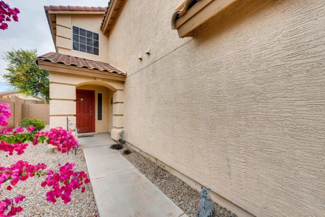 31844 N Desert View Drive, San Tan Valley, AZ 85143 (MLS #5862209) :: The Property Partners at eXp Realty