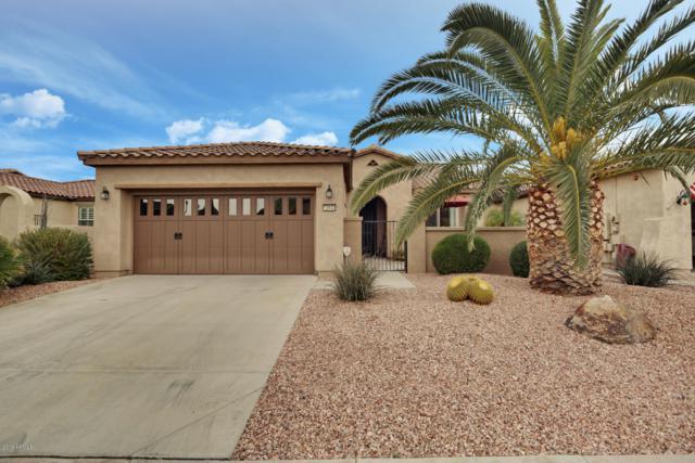 12642 W Pinnacle Vista Drive, Peoria, AZ 85383 (MLS #5862307) :: Team Wilson Real Estate