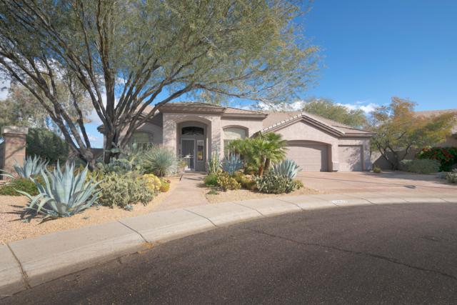 14435 N 66TH Place, Scottsdale, AZ 85254 (MLS #5862374) :: The W Group