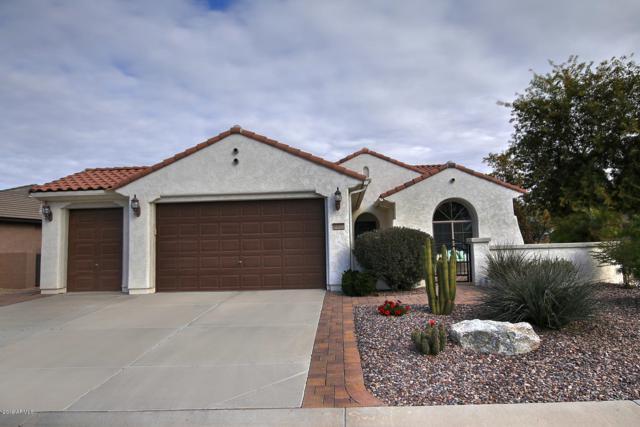 6350 W Sandpiper Way, Florence, AZ 85132 (MLS #5862447) :: Lifestyle Partners Team