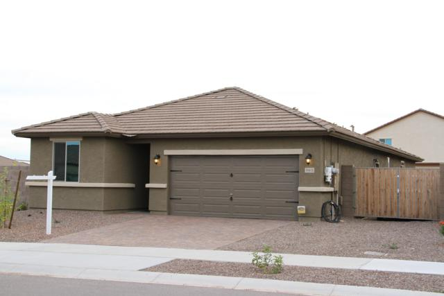 18431 W Tina Lane, Surprise, AZ 85387 (MLS #5862618) :: The Daniel Montez Real Estate Group