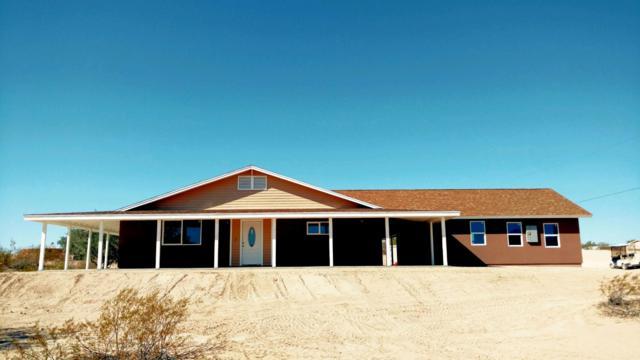 30420 W Mckinley Street, Buckeye, AZ 85396 (MLS #5862686) :: Conway Real Estate