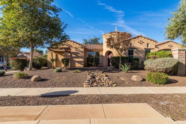 15216 W Windrose Drive, Surprise, AZ 85379 (MLS #5862709) :: Kortright Group - West USA Realty