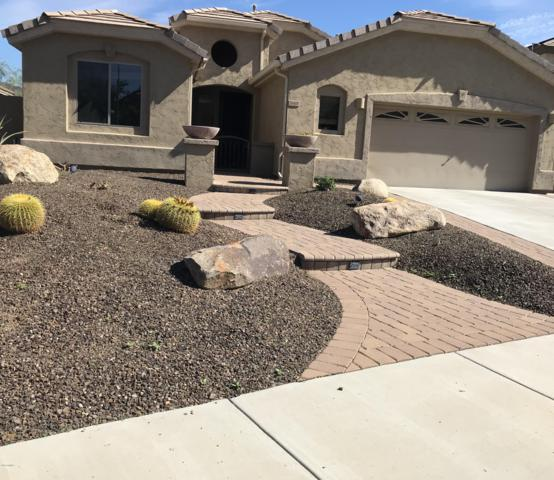 26405 N 54TH Avenue, Phoenix, AZ 85083 (MLS #5862726) :: Conway Real Estate