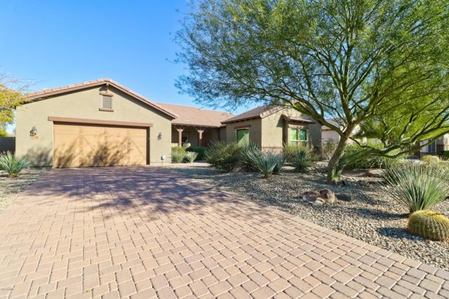 2383 N 160TH Avenue, Goodyear, AZ 85395 (MLS #5862747) :: RE/MAX Excalibur