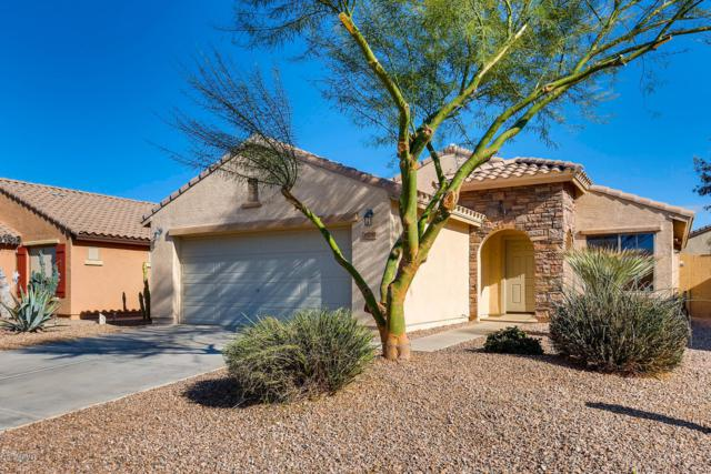 33037 N Quarry Hills Drive, San Tan Valley, AZ 85143 (MLS #5862759) :: RE/MAX Excalibur