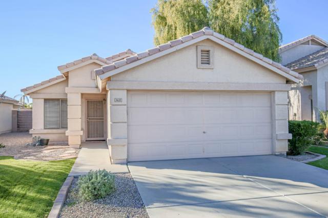 3620 N 106TH Drive, Avondale, AZ 85392 (MLS #5862761) :: The Daniel Montez Real Estate Group