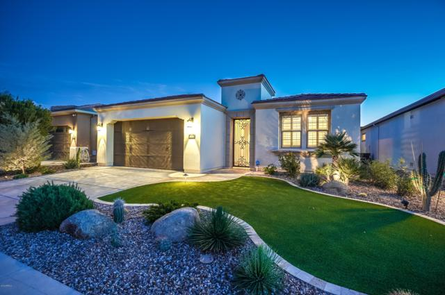 1383 E Verde Boulevard, San Tan Valley, AZ 85140 (MLS #5862786) :: Santizo Realty Group