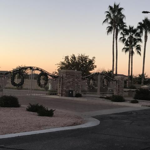 21926 E Diana Way, Queen Creek, AZ 85142 (MLS #5862842) :: Brett Tanner Home Selling Team
