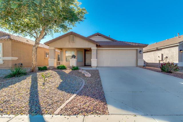 41393 W Brandt Drive, Maricopa, AZ 85138 (MLS #5862852) :: The Jesse Herfel Real Estate Group