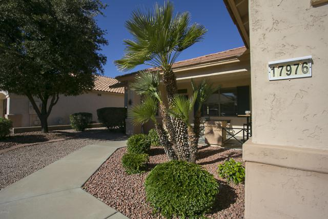 17976 W Udall Drive, Surprise, AZ 85374 (MLS #5862856) :: The Laughton Team