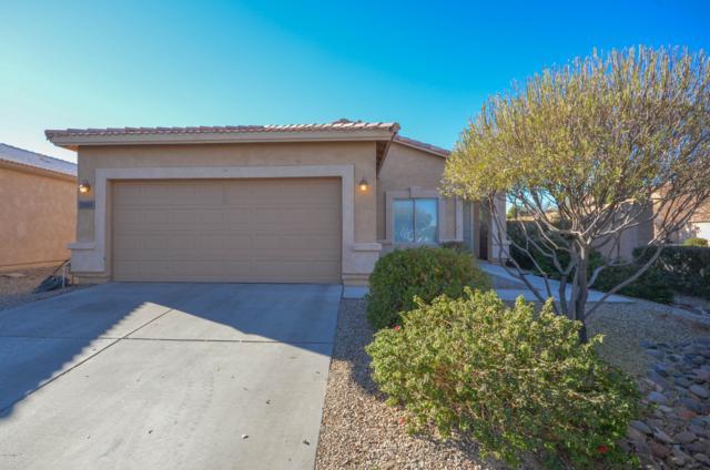 28684 N Rainfall Drive, San Tan Valley, AZ 85143 (MLS #5862895) :: The W Group