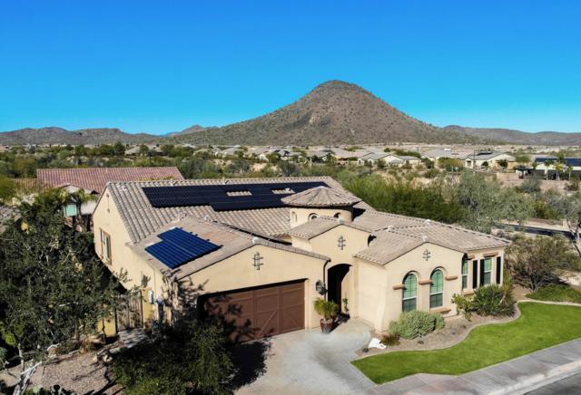 12762 W Oyer Lane, Peoria, AZ 85383 (MLS #5862904) :: CC & Co. Real Estate Team