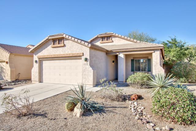 15430 N 172ND Avenue, Surprise, AZ 85388 (MLS #5862924) :: Arizona 1 Real Estate Team