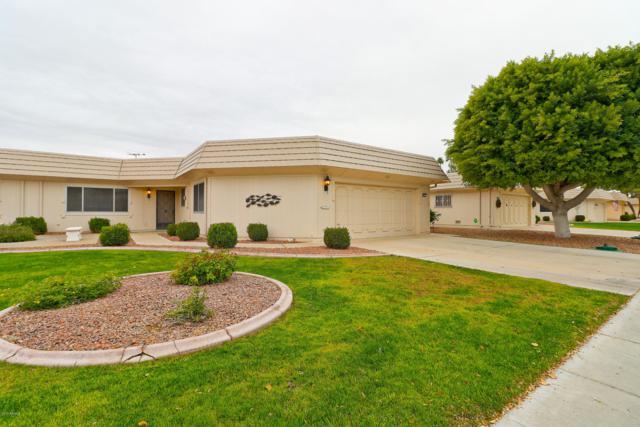 10219 W Hutton Drive, Sun City, AZ 85351 (MLS #5862960) :: The Daniel Montez Real Estate Group