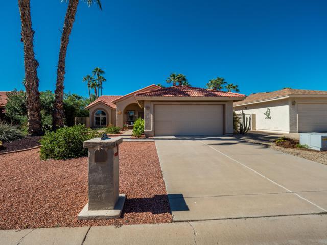 26626 S Sageberry Drive, Sun Lakes, AZ 85248 (MLS #5863076) :: Yost Realty Group at RE/MAX Casa Grande