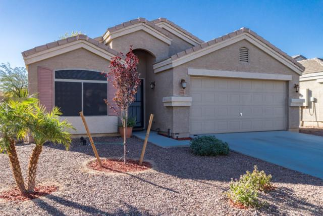11733 W Mariposa Grande, Sun City, AZ 85373 (MLS #5863079) :: RE/MAX Excalibur