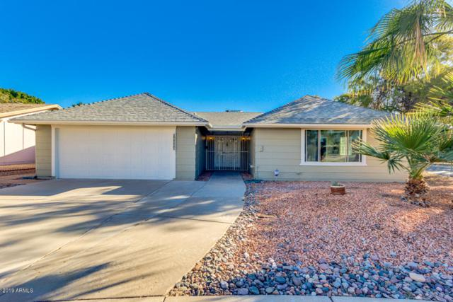 11245 S Tomi Drive, Phoenix, AZ 85044 (MLS #5863198) :: Yost Realty Group at RE/MAX Casa Grande