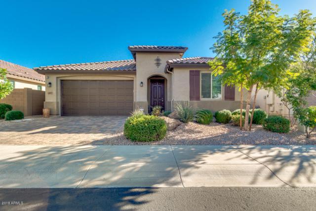 16017 N 109TH Avenue, Sun City, AZ 85351 (MLS #5863250) :: The Laughton Team