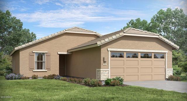 7141 N 123RD Drive, Glendale, AZ 85307 (MLS #5863264) :: Conway Real Estate