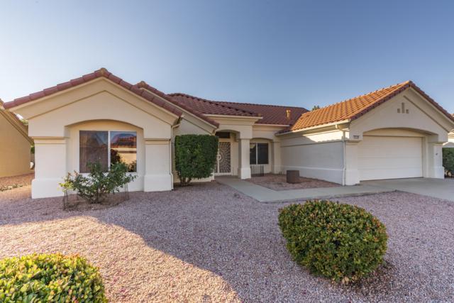 14129 W Parada Drive, Sun City West, AZ 85375 (MLS #5863273) :: Team Wilson Real Estate
