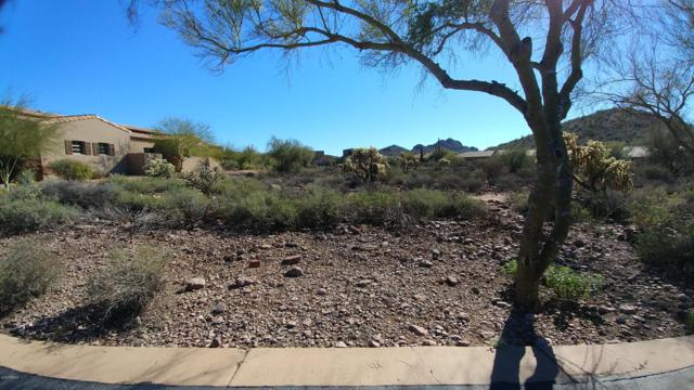 3449 S First Water Trail, Gold Canyon, AZ 85118 (MLS #5863301) :: Conway Real Estate