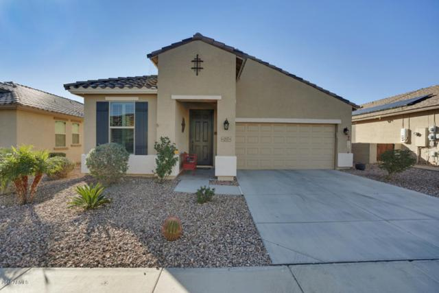 22577 W Morning Glory Street, Buckeye, AZ 85326 (MLS #5863347) :: The Laughton Team