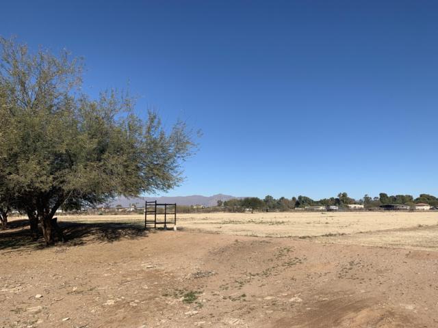 43203 N Coyote Road, San Tan Valley, AZ 85140 (MLS #5863353) :: Team Wilson Real Estate