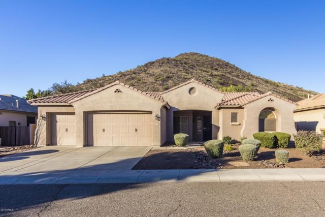 25610 N 55TH Lane, Phoenix, AZ 85083 (MLS #5863363) :: The Laughton Team