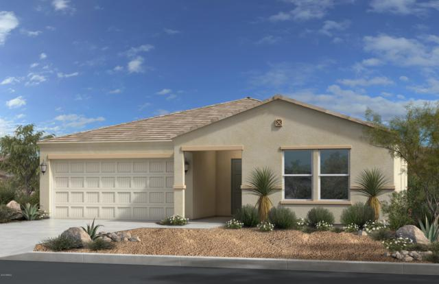 18066 E Via Rubio, Gold Canyon, AZ 85118 (MLS #5863413) :: The Bill and Cindy Flowers Team