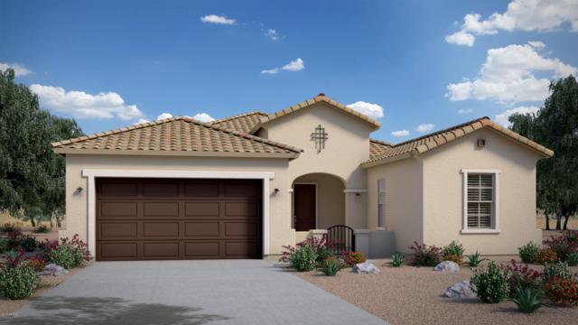 23481 S 212TH Street, Queen Creek, AZ 85142 (MLS #5863481) :: Revelation Real Estate