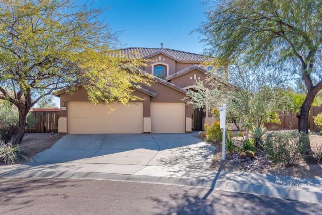 8353 W Rock Springs Drive, Peoria, AZ 85383 (MLS #5863511) :: The Laughton Team