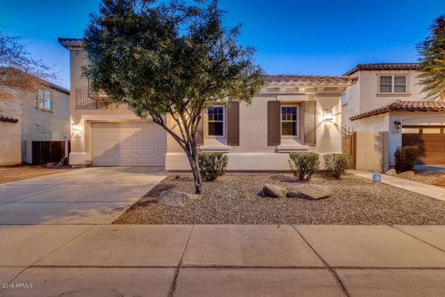 3246 S Cottonwood Drive, Chandler, AZ 85286 (MLS #5863549) :: Lifestyle Partners Team